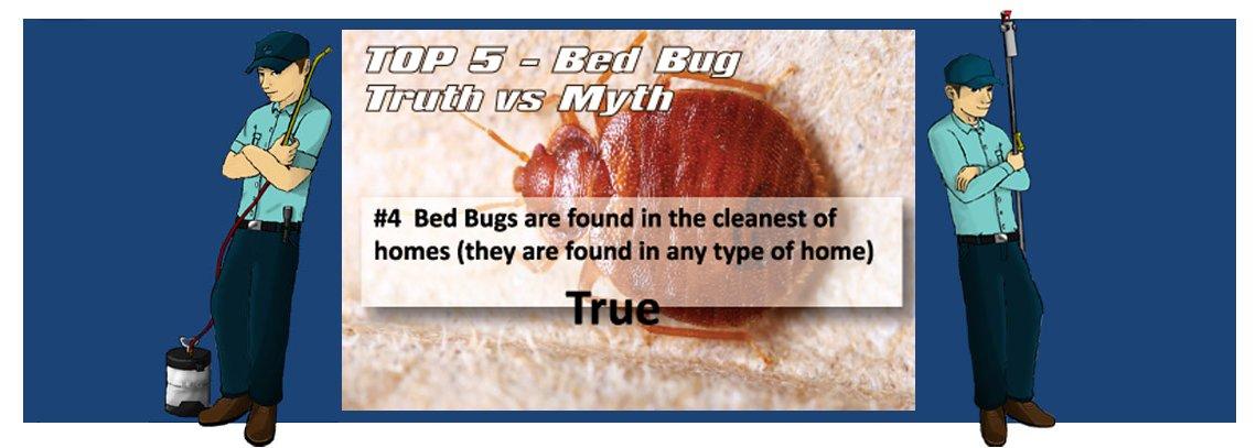 slide bedbug4 1