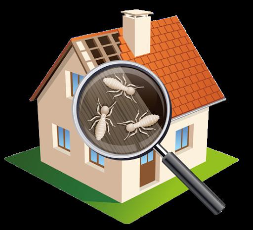 termitecontrol